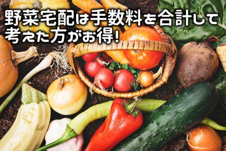 野菜宅配を安く節約するためには入会金・各種手数料を合計する