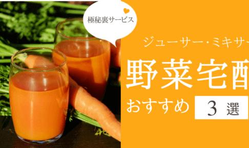 ジューサー・ミキサーの野菜宅配サービス
