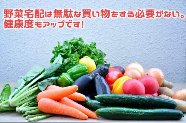 野菜宅配はスーパーで買うのに比べて高い?