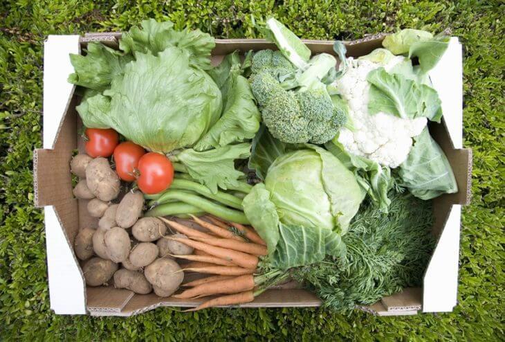 野菜宅配サービスのメリットイメージ