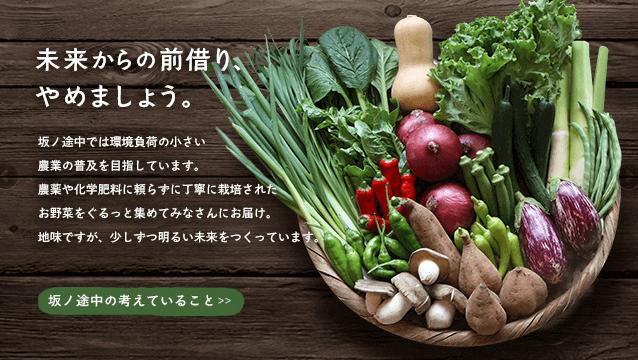 坂ノ途中、野菜宅配サービス