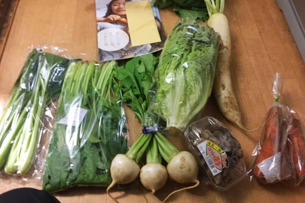 ミレーの野菜お試しセット