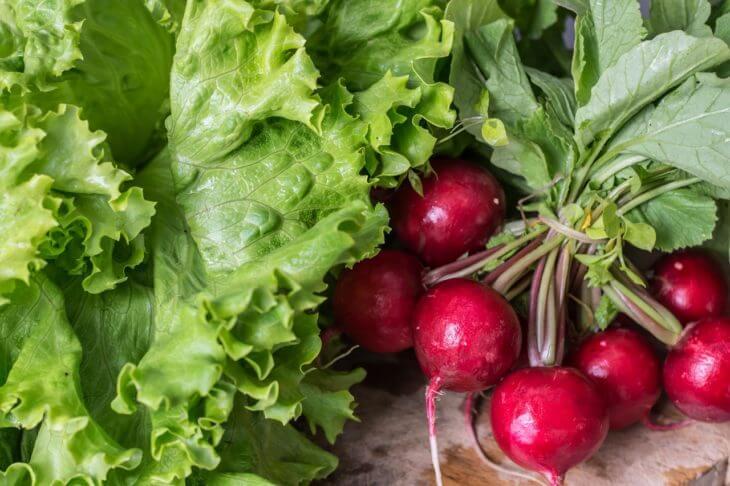 野菜townが有機(オーガニック)無農薬の野菜に対して思うこと