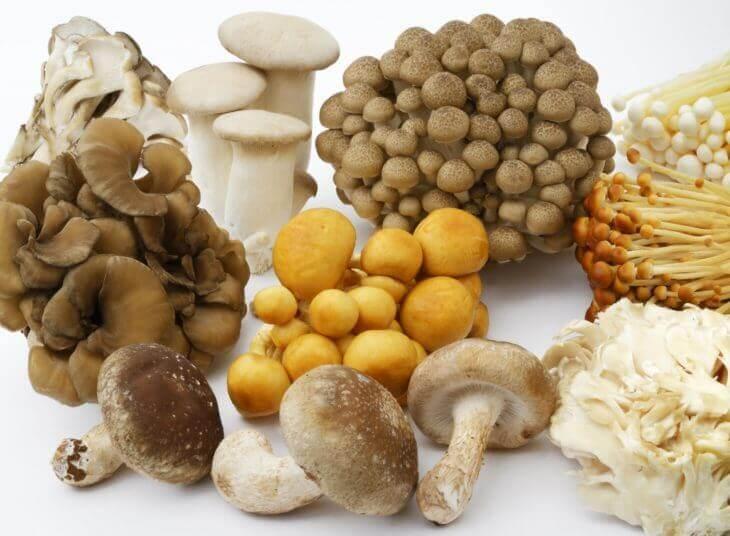 不溶性食物繊維を含む野菜(食べ物)
