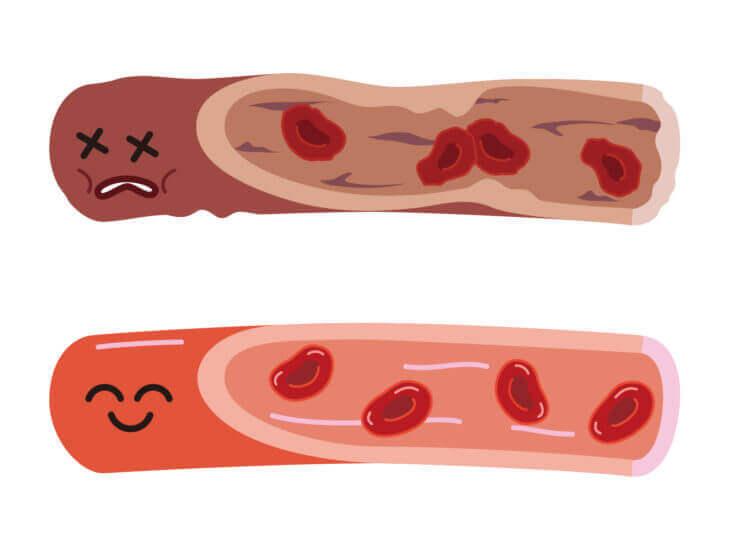 血液の流れを良くして、栄養を体の隅々へ