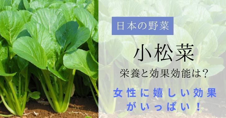 小松菜の栄養素と効果効能を調べた|女性が嬉しい成分がいっぱい!