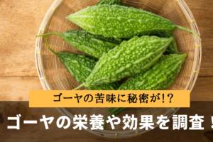 ゴーヤの栄養と効果・効能を調査!苦味成分が胃腸を強くする?